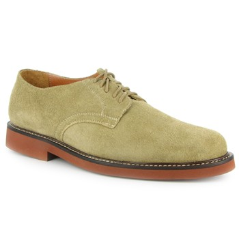 David Spencer Dirty Buck Oxford Casual